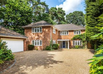 Thumbnail 5 bed detached house to rent in Cedar Road, Hook Heath, Woking