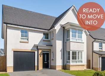 "Thumbnail 4 bedroom detached house for sale in ""Fairmount"" at Haddington"