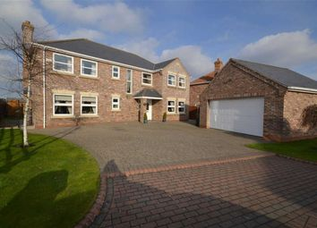 Thumbnail 5 bed property for sale in Primrose Lane, Tetney, Grimsby