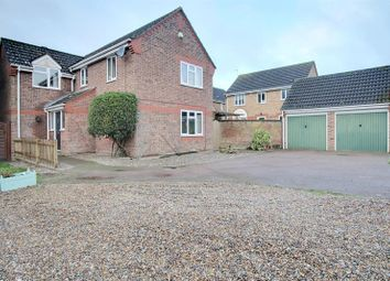 Thumbnail 4 bed detached house to rent in St Marys Grove, Sprowston, Norwich