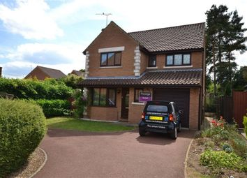 Thumbnail 4 bedroom detached house to rent in Amherst Close, Swaffham