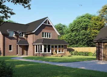 Thumbnail 4 bedroom property for sale in Farmers Walk, Everton, Lymington