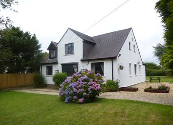 Thumbnail 4 bed detached house to rent in St. Nicholas, Cardiff