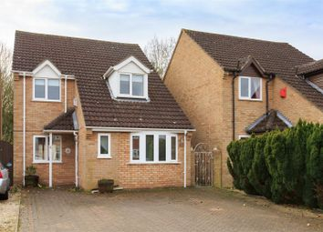 Thumbnail 3 bed detached house for sale in Hotson Close, Long Stratton, Norwich