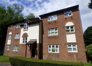 Thumbnail Studio to rent in Nutfield Court, Southampton