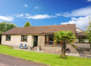 Thumbnail 4 bed detached bungalow for sale in Calside Drive, Dumfries