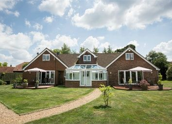 Thumbnail 5 bed detached bungalow for sale in Teston Road, Offham, West Malling, Kent