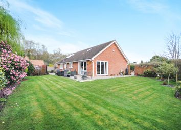 Thumbnail 3 bed detached bungalow for sale in Birches Walk, Galleywood, Chelmsford