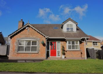Thumbnail 4 bedroom property for sale in Ivy Mead, Derry / Londonderry