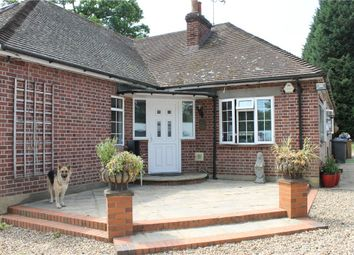 Thumbnail 6 bed detached bungalow to rent in Hardwick Lane, Lyne, Chertsey, Surrey