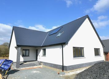 Thumbnail 5 bed detached bungalow for sale in Saron Road, Pentre-Cwrt, Llandysul