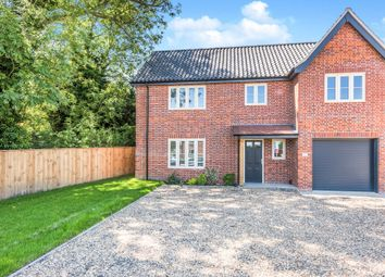 Thumbnail 4 bed property for sale in Bunwell Street, Bunwell, Norwich
