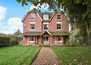 Thumbnail 6 bed detached house to rent in Ovington, Alresford, Hampshire