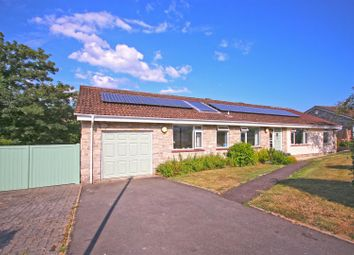 Thumbnail 3 bed detached bungalow for sale in Springhill Gardens, Lyme Regis