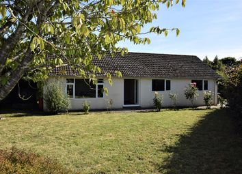 Thumbnail 3 bed bungalow to rent in Stearsby, York
