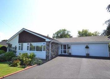 Thumbnail 3 bed bungalow to rent in Limers Lane, Northam, Devon