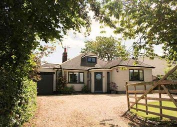 Thumbnail 3 bed detached bungalow for sale in Melton Road, Waltham On The Wolds, Melton Mowbray