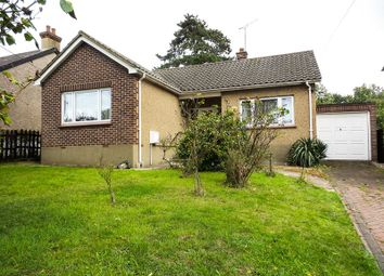 Thumbnail 2 bed detached bungalow to rent in Downhall Road, Rayleigh