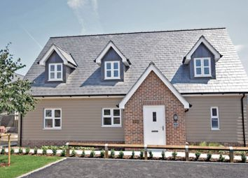 4 bed detached house for sale in Orchard Gardens, Kirby Cross, Frinton-On-Sea CO13