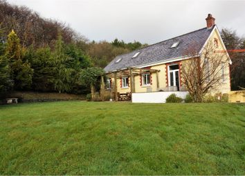 Thumbnail 4 bed detached house for sale in Taliaris, Llandeilo
