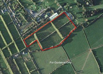 Thumbnail Property for sale in Mallardstown, Callan, Kilkenny