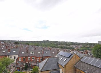 Psalter Lane, Brincliffe, Sheffield S11