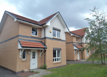 Thumbnail 3 bed detached house to rent in James Murdie Gardens, Hamilton