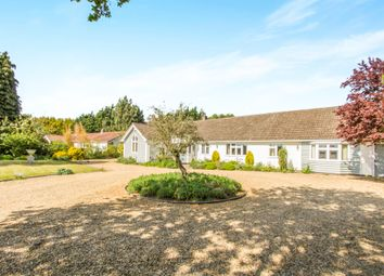 Thumbnail 3 bed detached bungalow for sale in Leicester Road, Uppingham, Oakham
