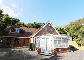 Thumbnail 4 bed detached house to rent in Broadlands, Clinton Way, Fairlight, East Sussex