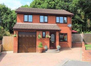 Thumbnail 4 bed detached house for sale in Oak Meadows, Tanyfron, Wrexham