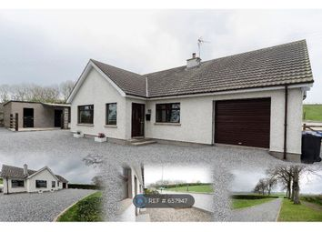 Thumbnail 5 bedroom bungalow to rent in Ballyvallagh Road, Larne