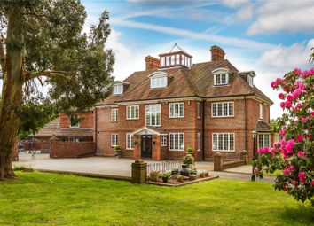 Thumbnail Equestrian property for sale in Finchampstead, Wokingham, Berkshire