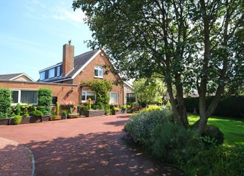 Thumbnail 6 bed detached house for sale in Beal Bank, Warkworth, Morpeth