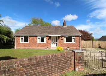 Thumbnail 3 bed detached bungalow for sale in Goldsmith Lane, All Saints, Axminster, Devon