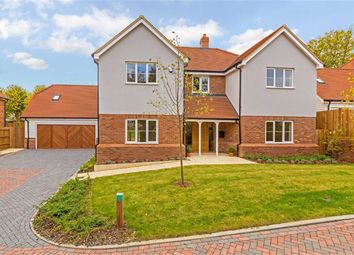 Thumbnail 5 bedroom detached house for sale in Bradgate, Cuffley, Hertfordshire