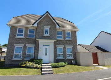 Thumbnail 3 bed detached house for sale in Unity Park, Plymouth
