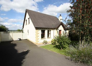 Thumbnail 4 bed detached house for sale in Hawthorn Hill, Kinallen, Down