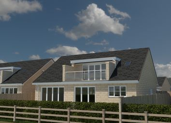 Thumbnail 3 bedroom detached bungalow for sale in The Diamond II, Paddock View, Hambleton