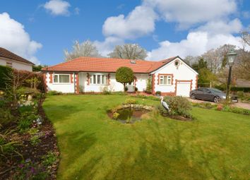 Thumbnail 4 bed detached bungalow for sale in Yew Tree Grove, Heald Green, Cheadle