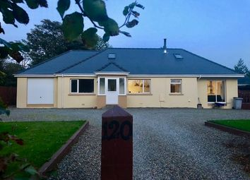 Thumbnail 4 bed detached bungalow to rent in Fishguard Road, Haverfordwest
