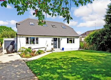 Thumbnail 4 bed bungalow for sale in Church Lane, Ashington, West Sussex
