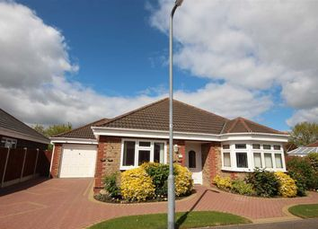 Thumbnail 3 bed bungalow for sale in Oak Close, Clacton-On-Sea