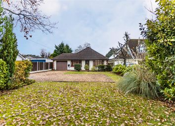 3 bed detached bungalow for sale in Forest Edge Drive, Ashley Heath, Ringwood BH24