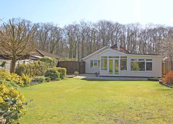 Thumbnail 2 bed detached bungalow for sale in Ringwood Road, Bartley, Southampton