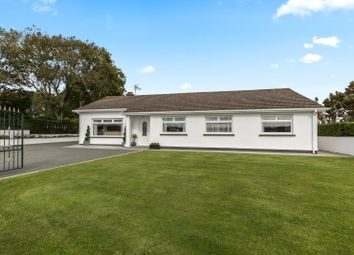 Thumbnail 4 bed detached bungalow for sale in Poppy Fields, Hayston Road, Johnston, Haverfordwest