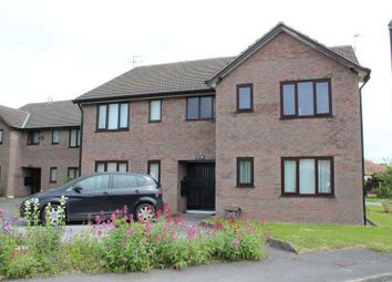 Thumbnail Studio for sale in Westlands Court, Thornton-Cleveleys