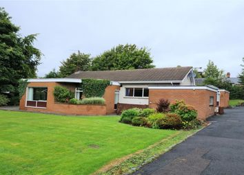 Thumbnail 5 bed bungalow for sale in Magheralave Road, Lisburn