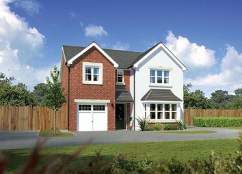 "Thumbnail 4 bedroom detached house for sale in ""Hampsfield"" at Bye Pass Road, Davenham, Northwich"