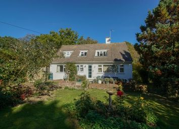 Thumbnail 4 bed bungalow for sale in Bugsell Lane, Robertsbridge, East Sussex