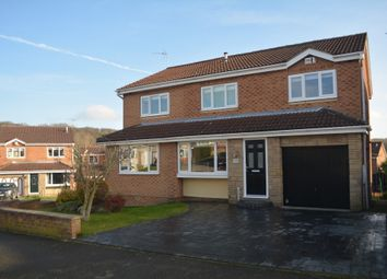 Thumbnail 5 bedroom detached house for sale in Dowland Avenue, High Green, Sheffield